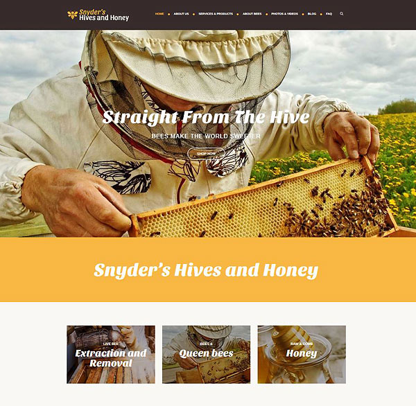 Snyder's Hives and Honey